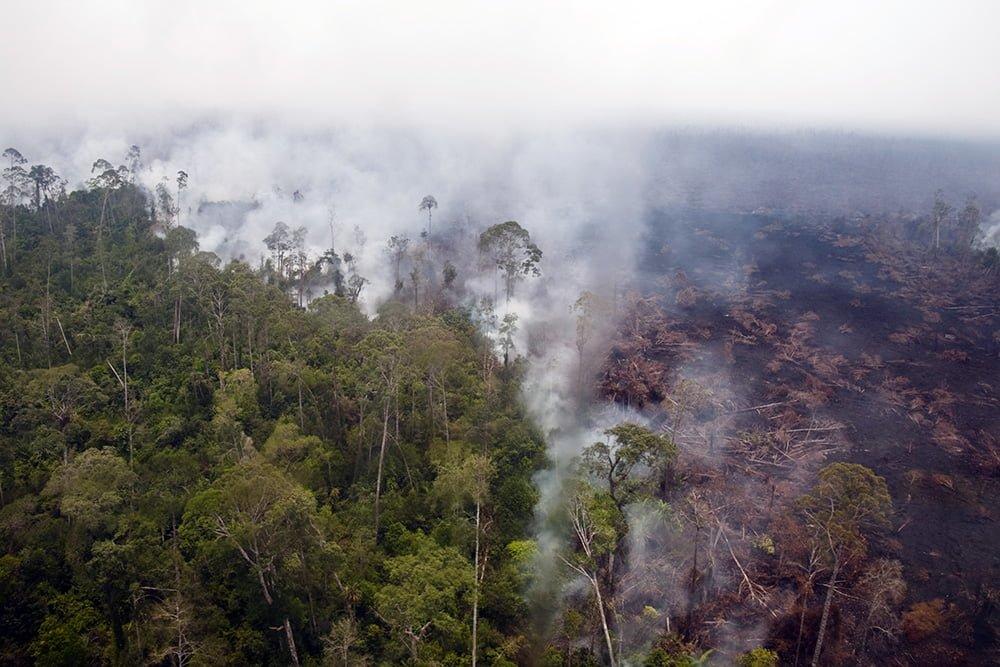Asap mengepul dari kebakaran lahan gambut di kawasan penyangga Cagar Biosfer Giam Siak Kecil-Bukit Batu, Provinsi Riau, Selasa (1/4). Mulai tanggal 4 April Satgas Operasi Terpadu Darurat Asap menyerahkan tongkat komandan kepada Pemprov Riau, dengan teta