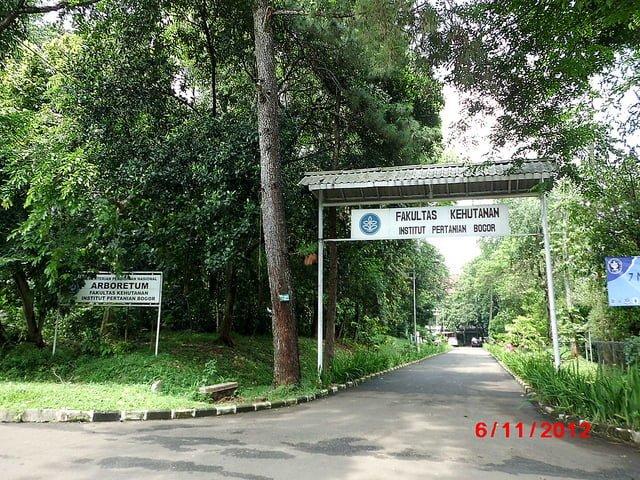 Fakultas Kehutanan IPB