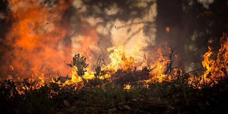 Kebakaran Lahan dan Hutan