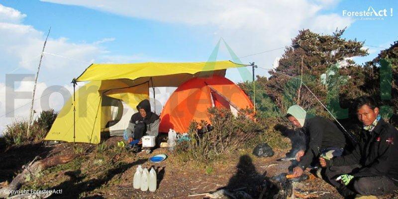 Gunung Kemiri di TNGL
