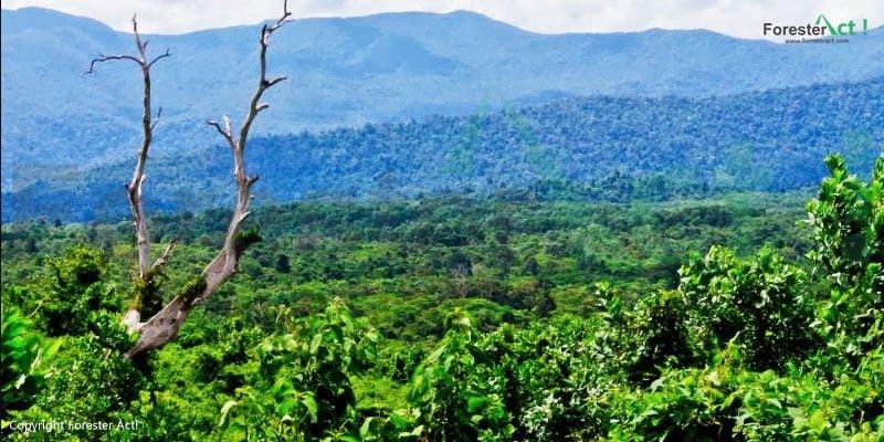 Hutan Wisata Sekundur