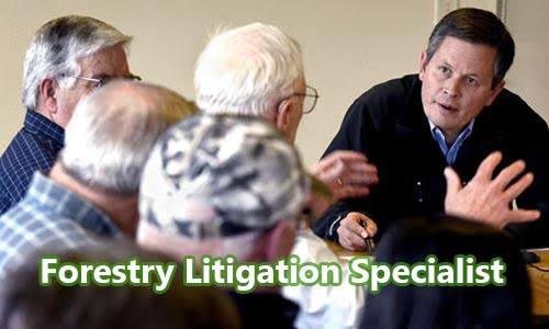 Ahli Litigasi Kehutanan (Forestry Litigation Specialist)