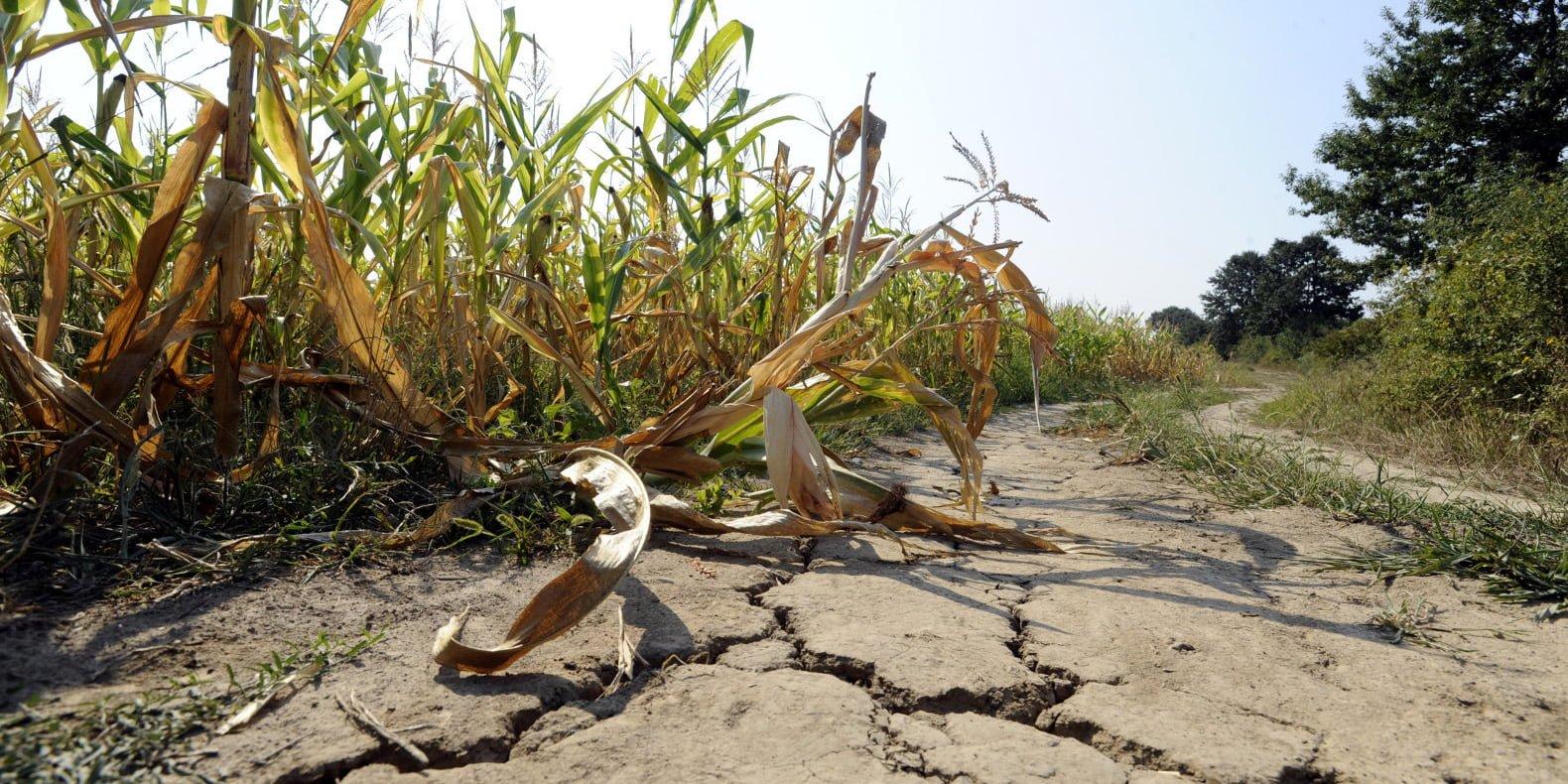 Erosi pada lahan via inhabitat.com