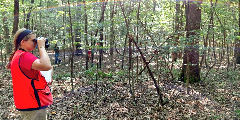 Kegiatan Manajemen Hutan