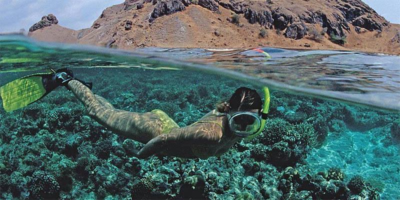Snorkling di Lautan Pulau Komodo