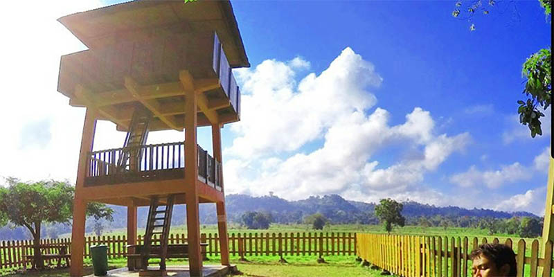 Menara Pengawas Taman Nasional AasPurwo