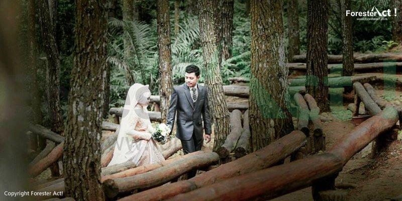 Foto Pre Wedding di Teater Musik Hutan Pinus Imogiri