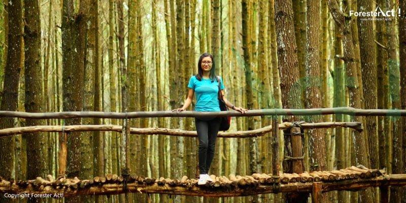 Jembatan kayu yang menjadi spot foto