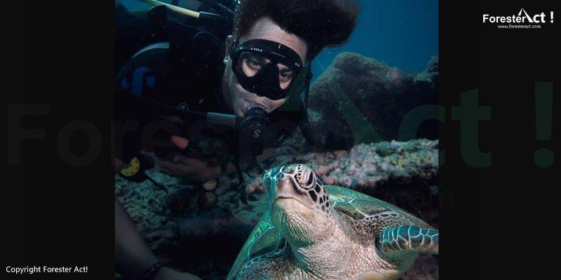 Menyelam bersama kura-kura di dalam laut dengan terumbu karang yang masih menawan