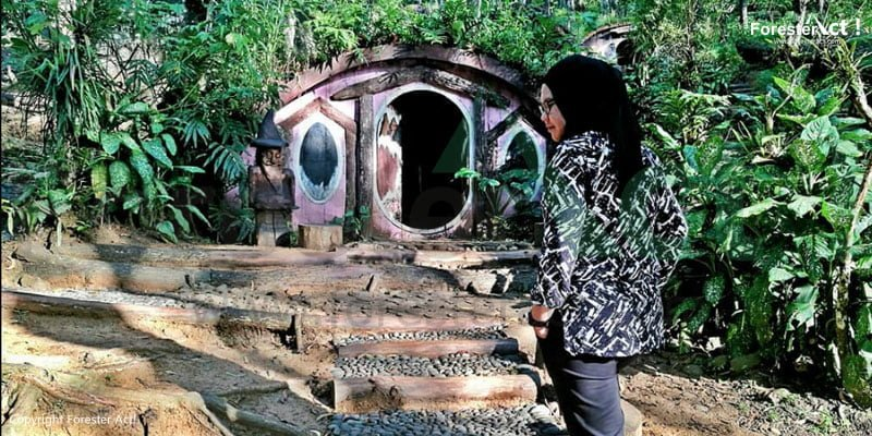 Rumah Hobbit di Hutan Pinus Imogiri Yogyakarta