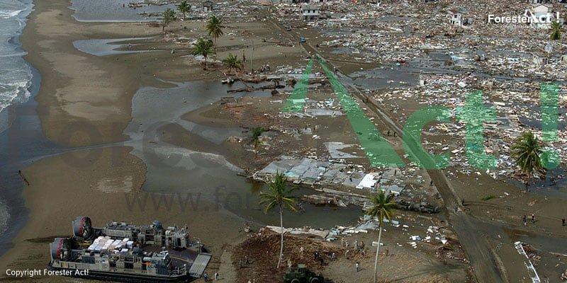 Dampak Terjangan Gelombang Bencana Tsunami