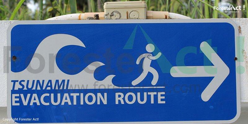 Papan Pemberitahuan Jalur Evakuasi Tsunami