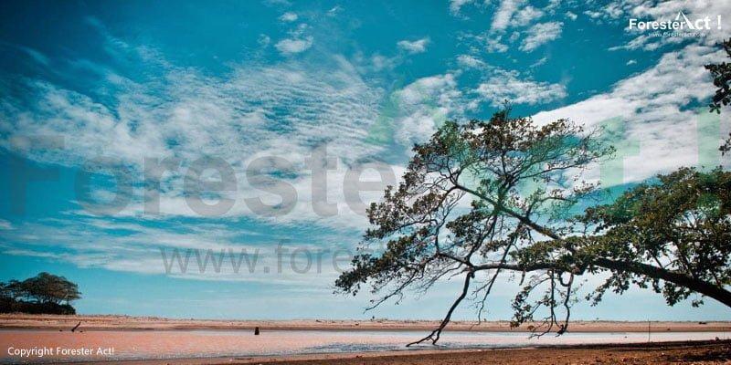 Suasana Pantai di Santolo