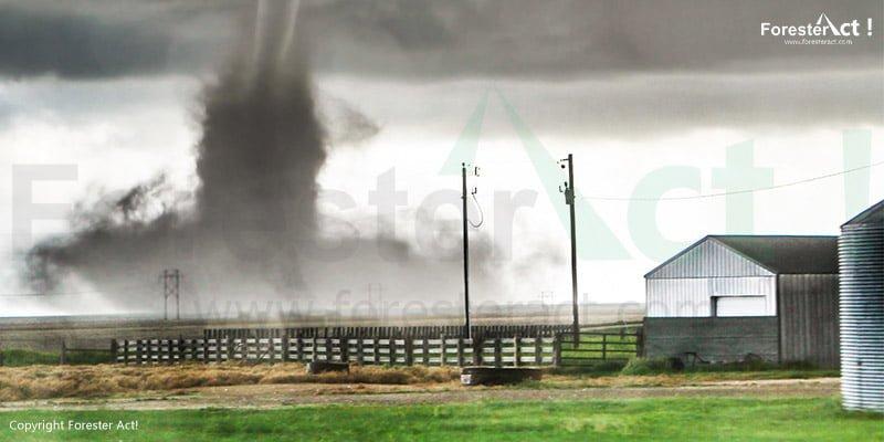 Bencana Alam Tornado