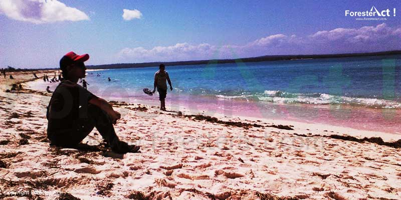 Pantai Cemara Kasih