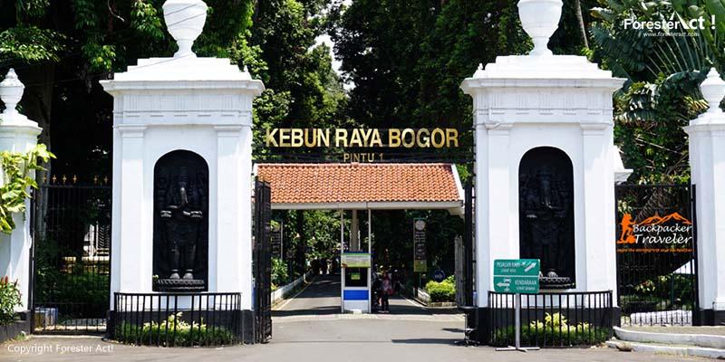 Jalan di Kebun Raya Bogor (KRB)