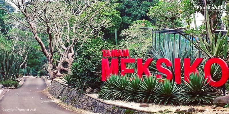 Taman Meksiko di Kebun Raya Bogor (KRB)