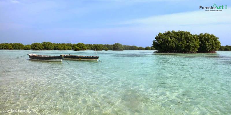 Beningnya Perairan di Sekitar Pulau Pari