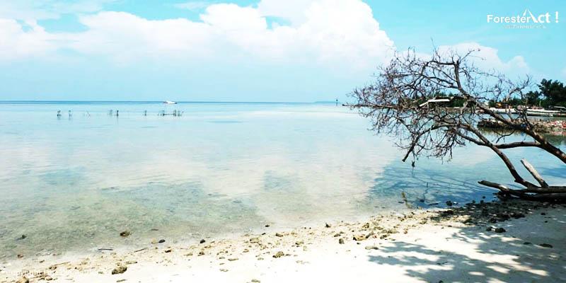 Pantai Perawan yang Putih Khas Pulau Pari