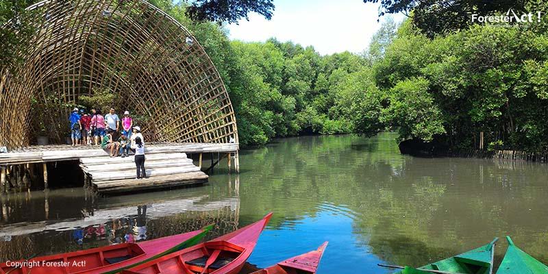 Tempat Ciamik untuk Foto Unik di Taman Wisata Alam Angke Kapuk