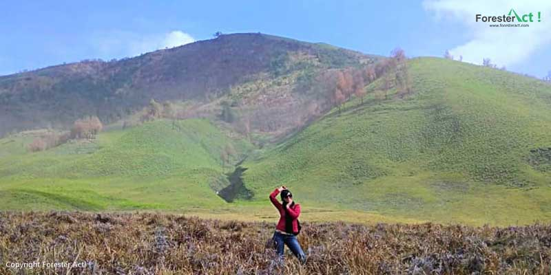 Bukit-Teletubies-di-Taman-Nasional-Bromo-Tengger-Semeru