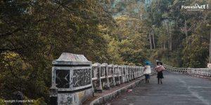 Jembatan-Penghubung-Desa-Kembang-Langit-dan-Kali-Tengah