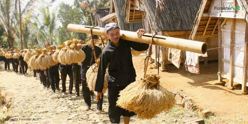 Masyarakat Adat Kasepuhan Banten Kidul