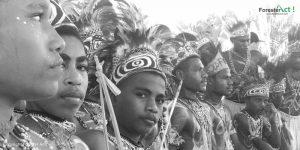 Masyarakat Adat di Papua