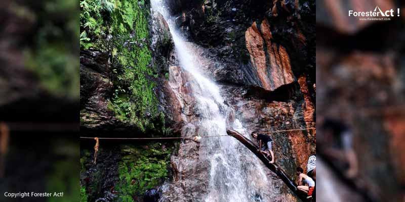 Curug Cigamea di Taman Nasional Gunung Halimun Salak