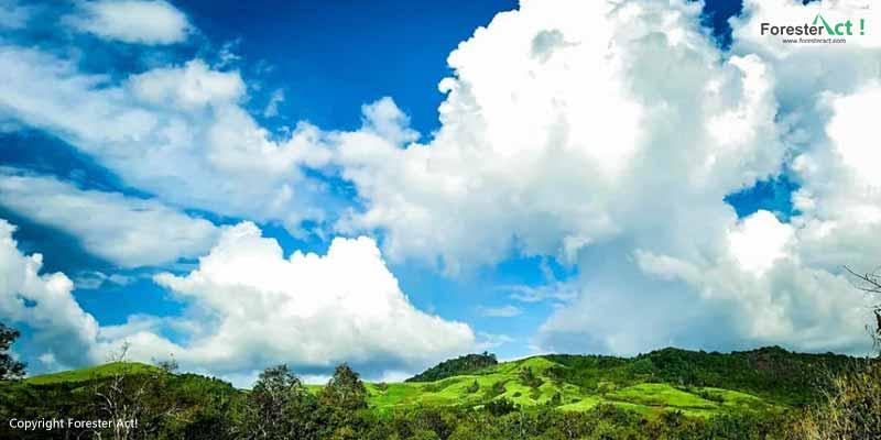 Lansekap Taman Nasional Danau Sentarum