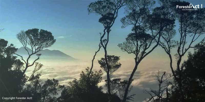 Puncak Manik Gunung Salak