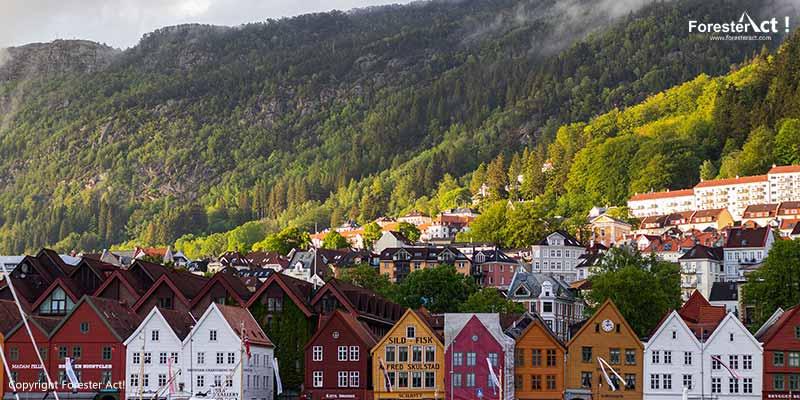 Hutan Kota sebagai Solusi Pencemaran Udara