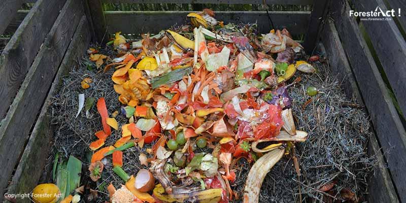 Sampah organik sebagai bahan baku pupuk kompos