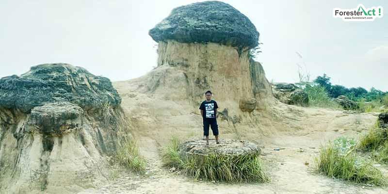 Berlibur ke Bukit Jamur Bungah (instagram.com)