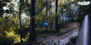 Taman Hutan Rakyat (instagram.com)