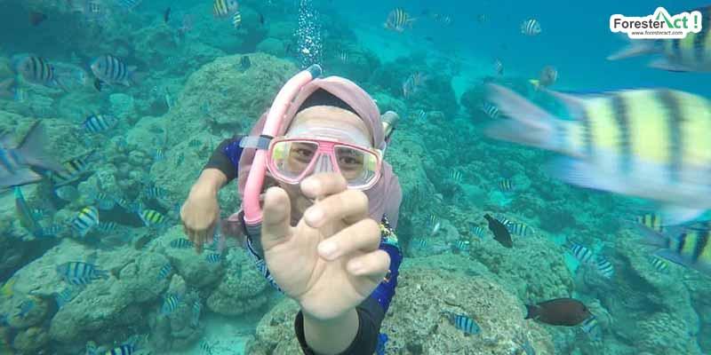 Keindahan Bawah Laut Pulau Rubiah (instagram.com)