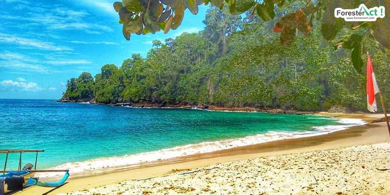 Pantai Teluk Hijau (instagram.com)