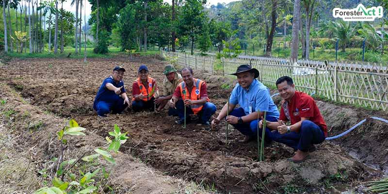 Penanaman sayur organik oleh PT Tirta Investama Plant Subang