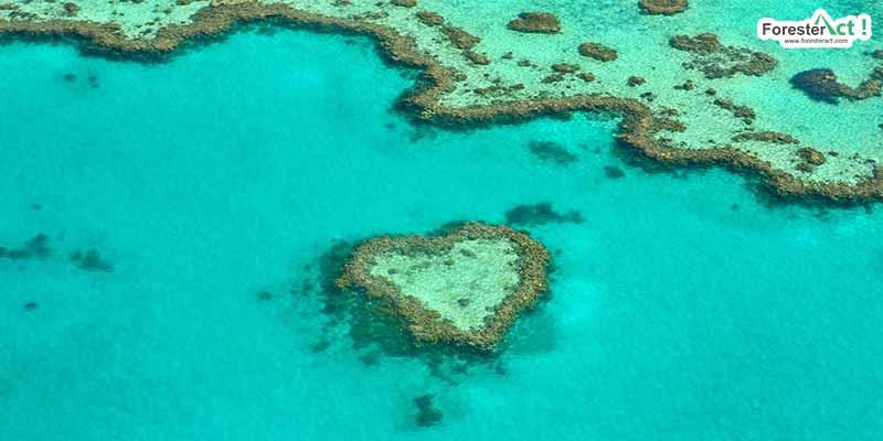 Terumbu Karang Atol di Australia (pixabay.com)