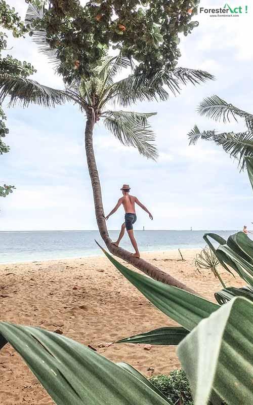 Berlibur di Pantai Karang Sanur (instagram.com)