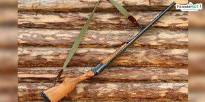 Senjata Berburu (pixabay)