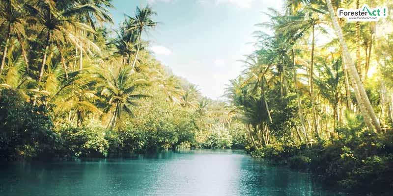 Sungai Maron (instagram.com)
