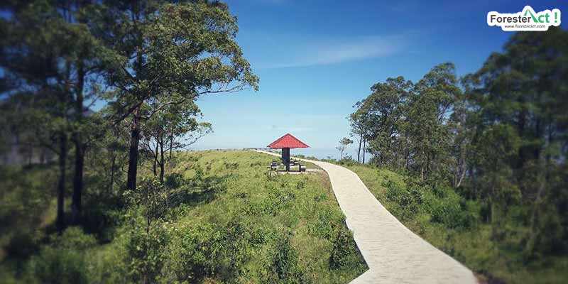 Bukit Wolobobo (instagram.com)