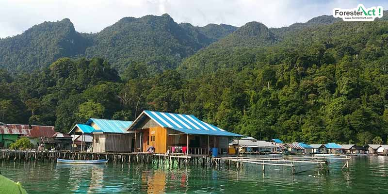 Desa Sawai (instagram.com)