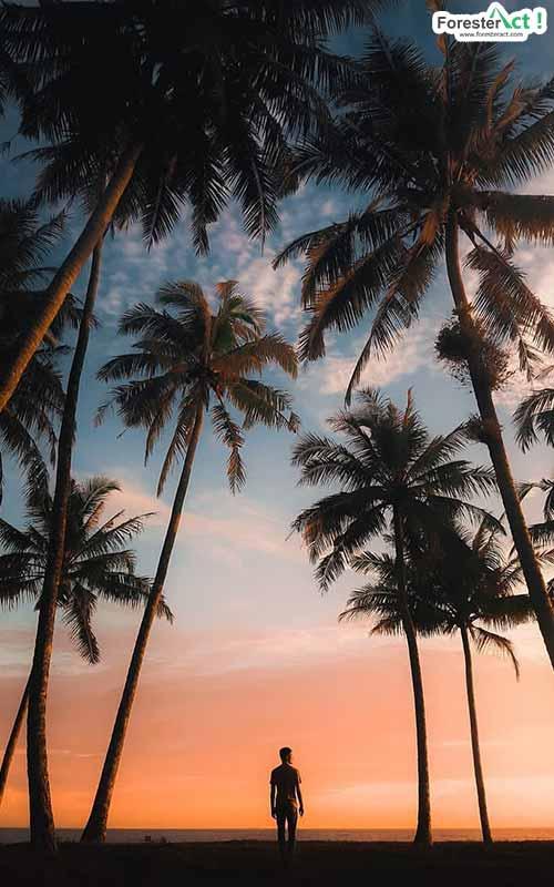Pantai Katapiang