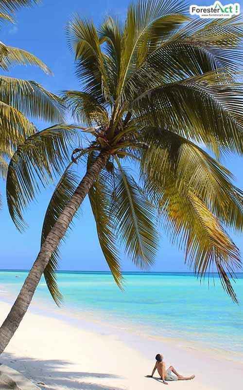 Pantai Walakiri (instagram.com)