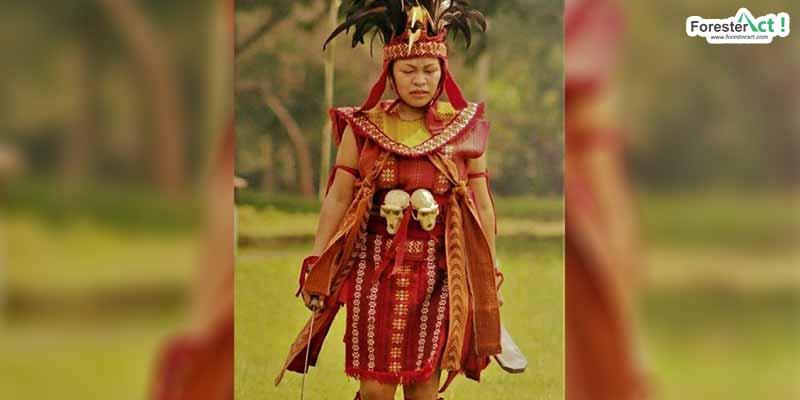 Nedine Helena Sulu, Dewan AMAN Nasional Region Sulawesi