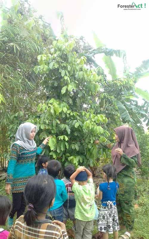 Sekolah Adat Telangkai dari Pengurus Harian Komunitas Menteng, Sumatera Utara (Sumber Dokumentasi Perempuan AMAN)