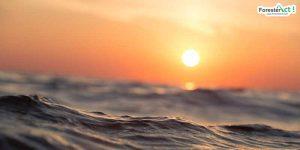 Matahari (instagram.com)