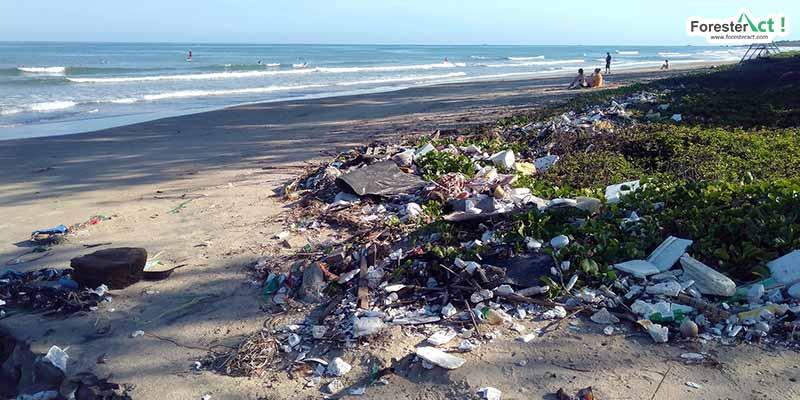 Sampah yang terjebak di pantai (pixabay.com)